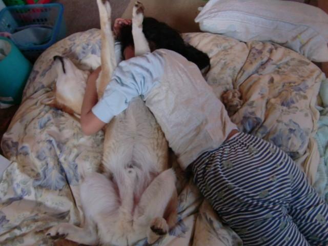 f:id:maki-mama:20100203120758j:image:w300