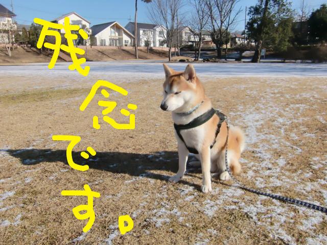 f:id:maki-mama:20100204121523j:image:w300