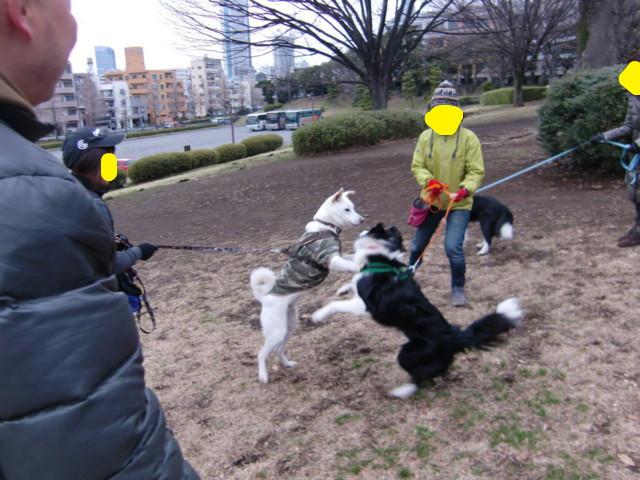 f:id:maki-mama:20100218134155j:image:w300