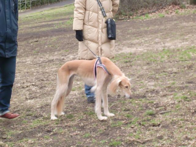 f:id:maki-mama:20100218134157j:image:w300