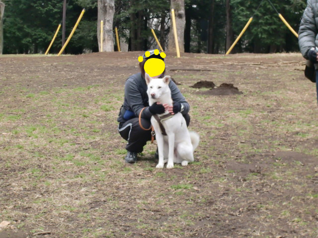 f:id:maki-mama:20100218134202j:image:w300