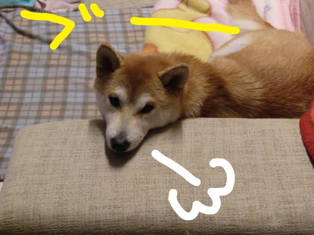 f:id:maki-mama:20100223152919j:image:w300