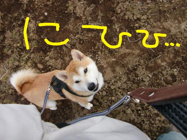 f:id:maki-mama:20100224131839j:image:w300
