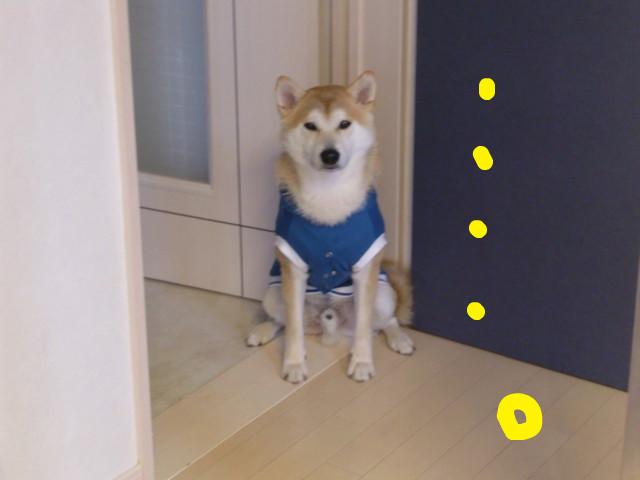 f:id:maki-mama:20100301204101j:image:w300