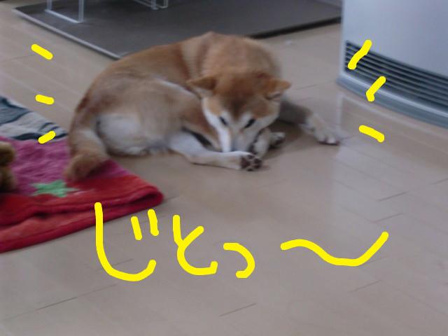 f:id:maki-mama:20100303110835j:image:w300