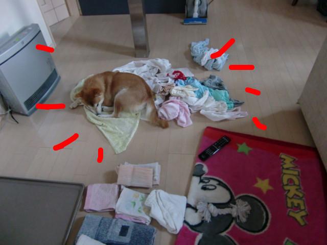 f:id:maki-mama:20100304122409j:image:w300