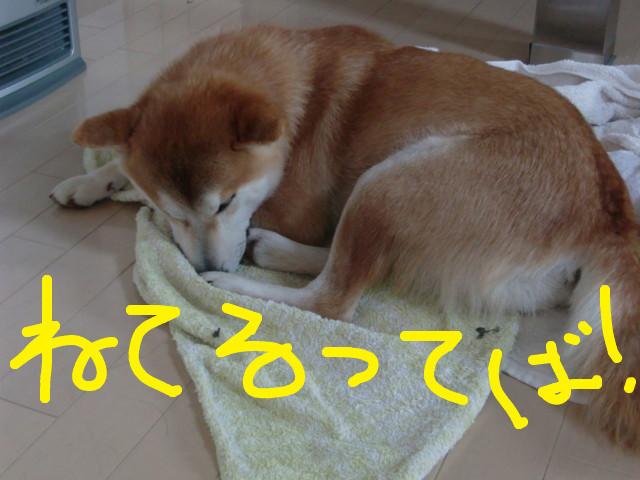 f:id:maki-mama:20100304122412j:image:w300