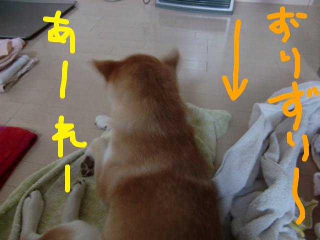 f:id:maki-mama:20100304122413j:image:w300