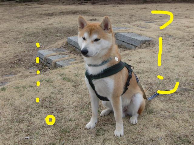 f:id:maki-mama:20100304122415j:image:w300