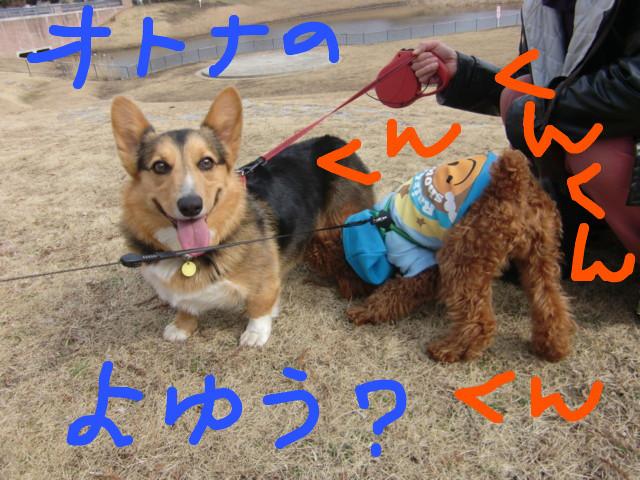 f:id:maki-mama:20100304122419j:image:w300