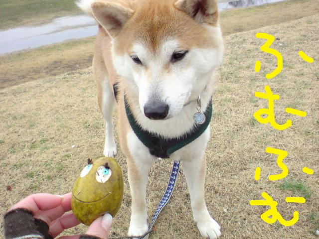 f:id:maki-mama:20100310154155j:image:w300