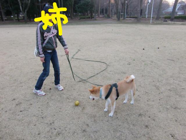 f:id:maki-mama:20100321190233j:image:w300