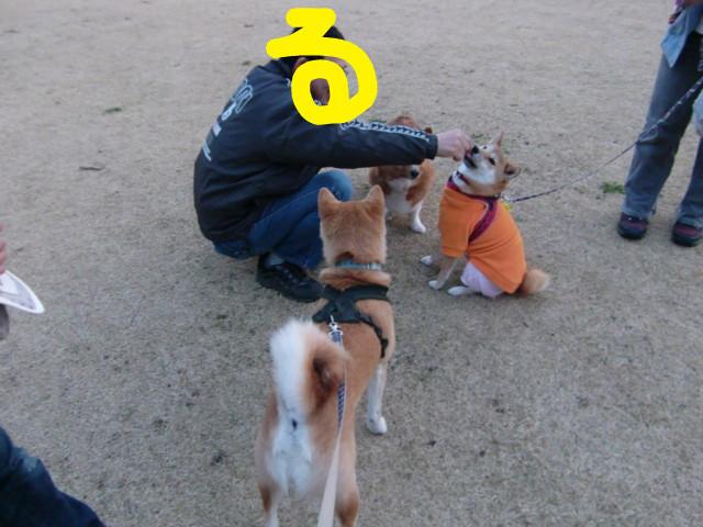f:id:maki-mama:20100321190241j:image:w300