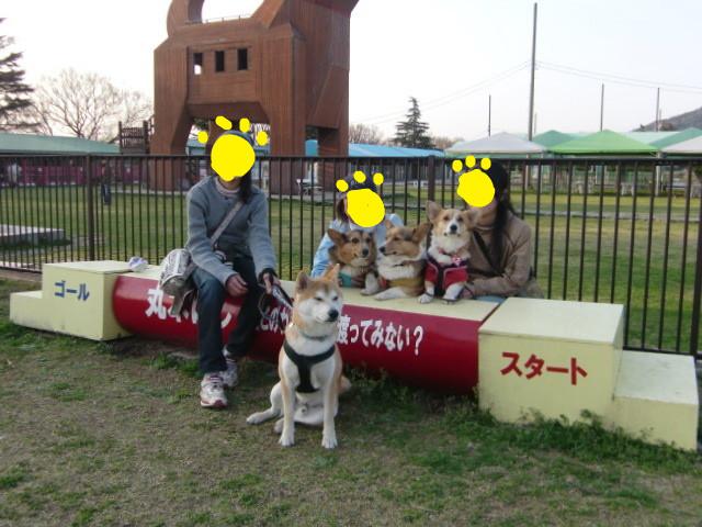 f:id:maki-mama:20100322193706j:image:w300