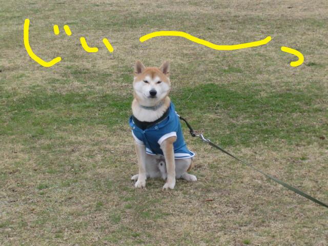 f:id:maki-mama:20100324105952j:image:w300