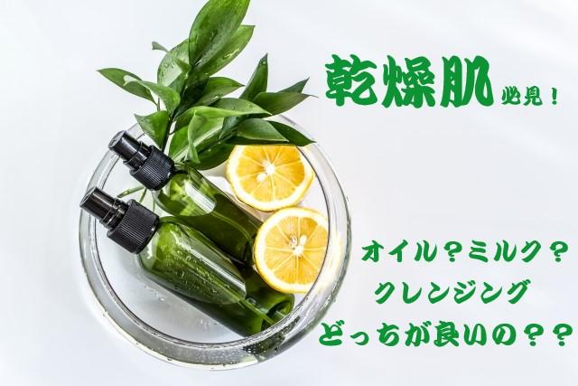 f:id:makiblog524:20191027165046j:plain