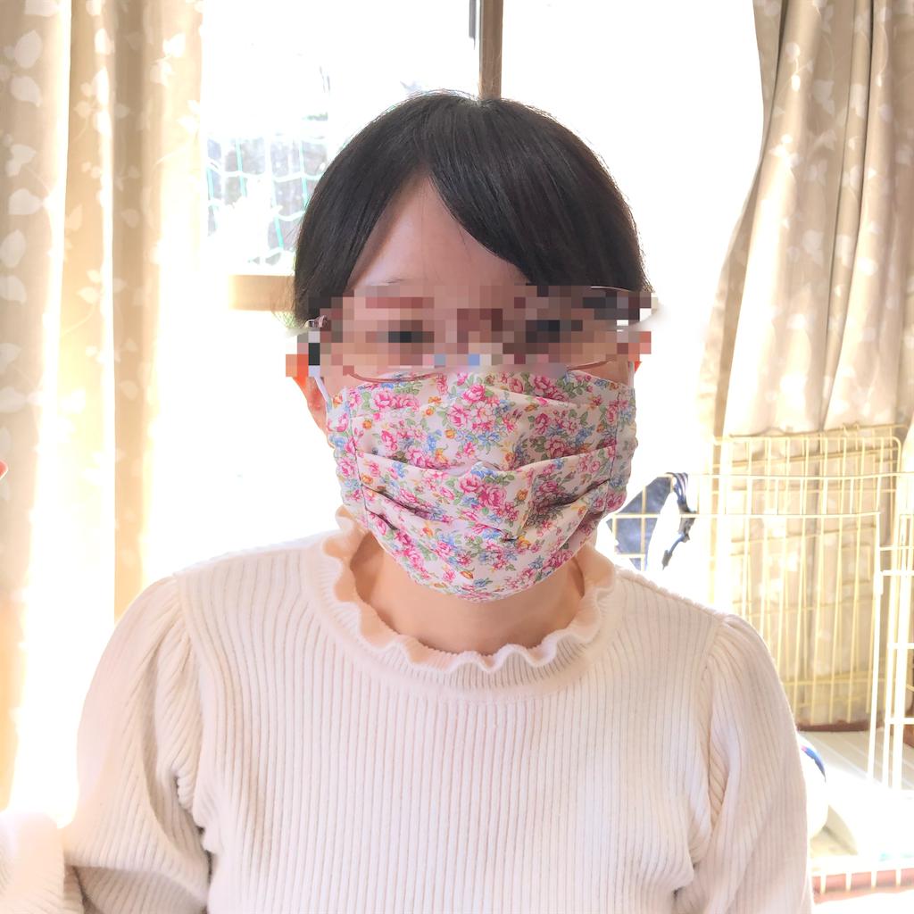 f:id:makichanchi:20200321093803p:image