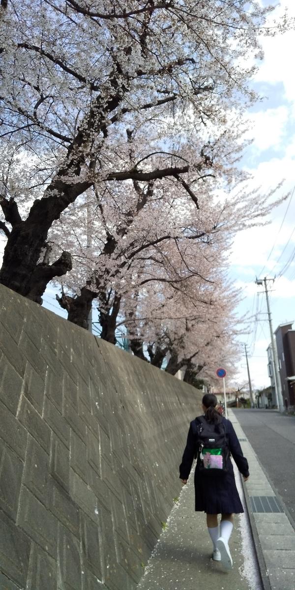 f:id:makikomaki310:20210409083349j:plain