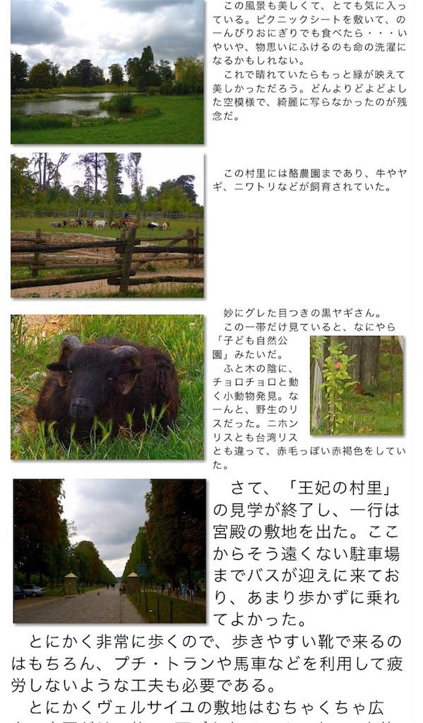 f:id:makikosuwa:20160906013331j:image