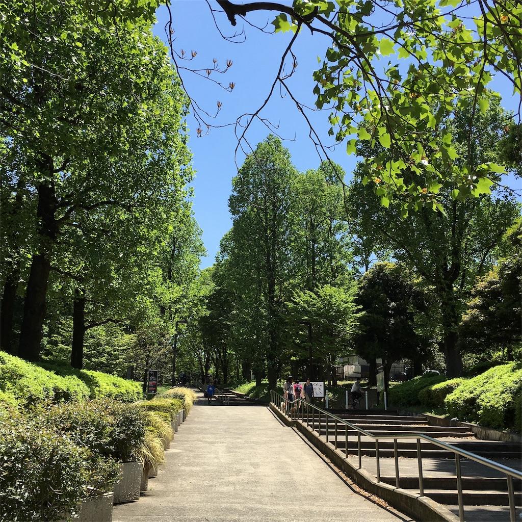 f:id:makikosuwa:20171004191435j:image