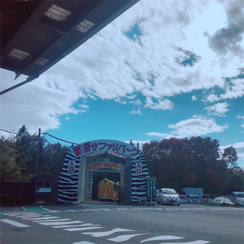 f:id:makikosuwa:20181111190401j:image