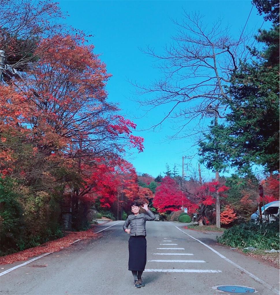 f:id:makikosuwa:20181111190441j:image