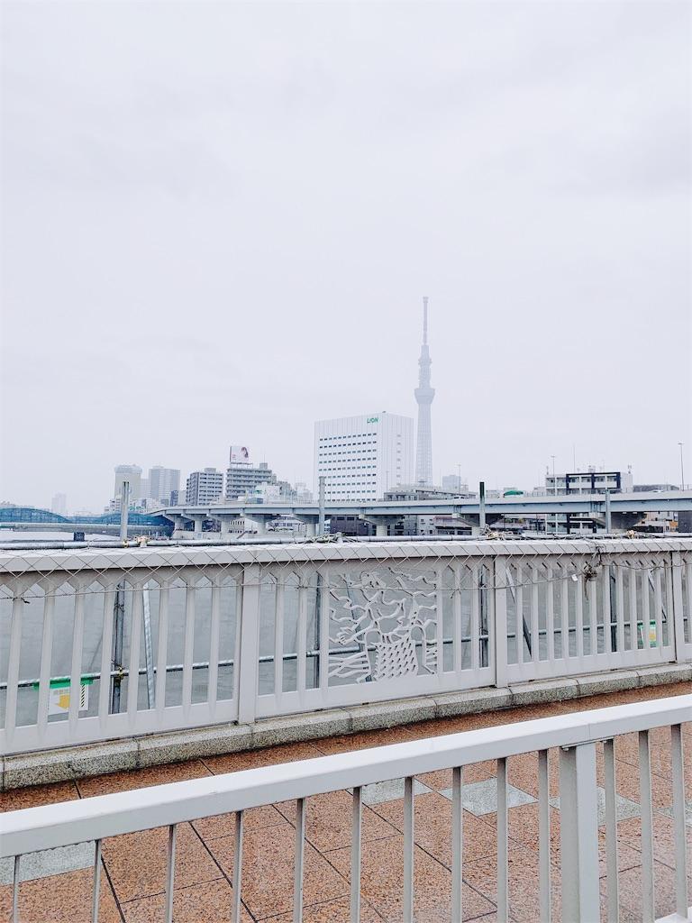 f:id:makikosuwa:20190307094351j:image