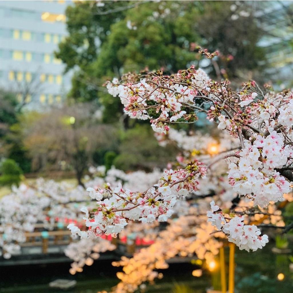 f:id:makikosuwa:20190330203606j:image