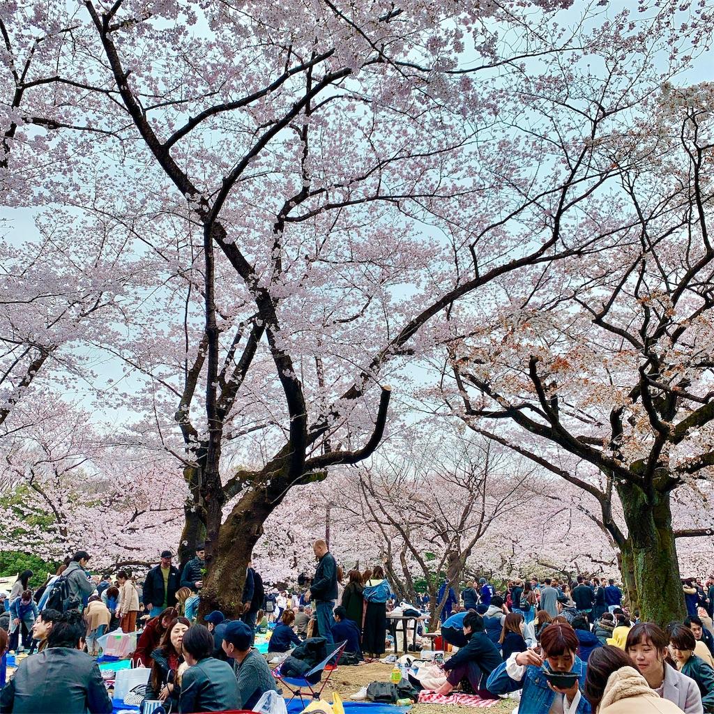 f:id:makikosuwa:20190330203825j:image