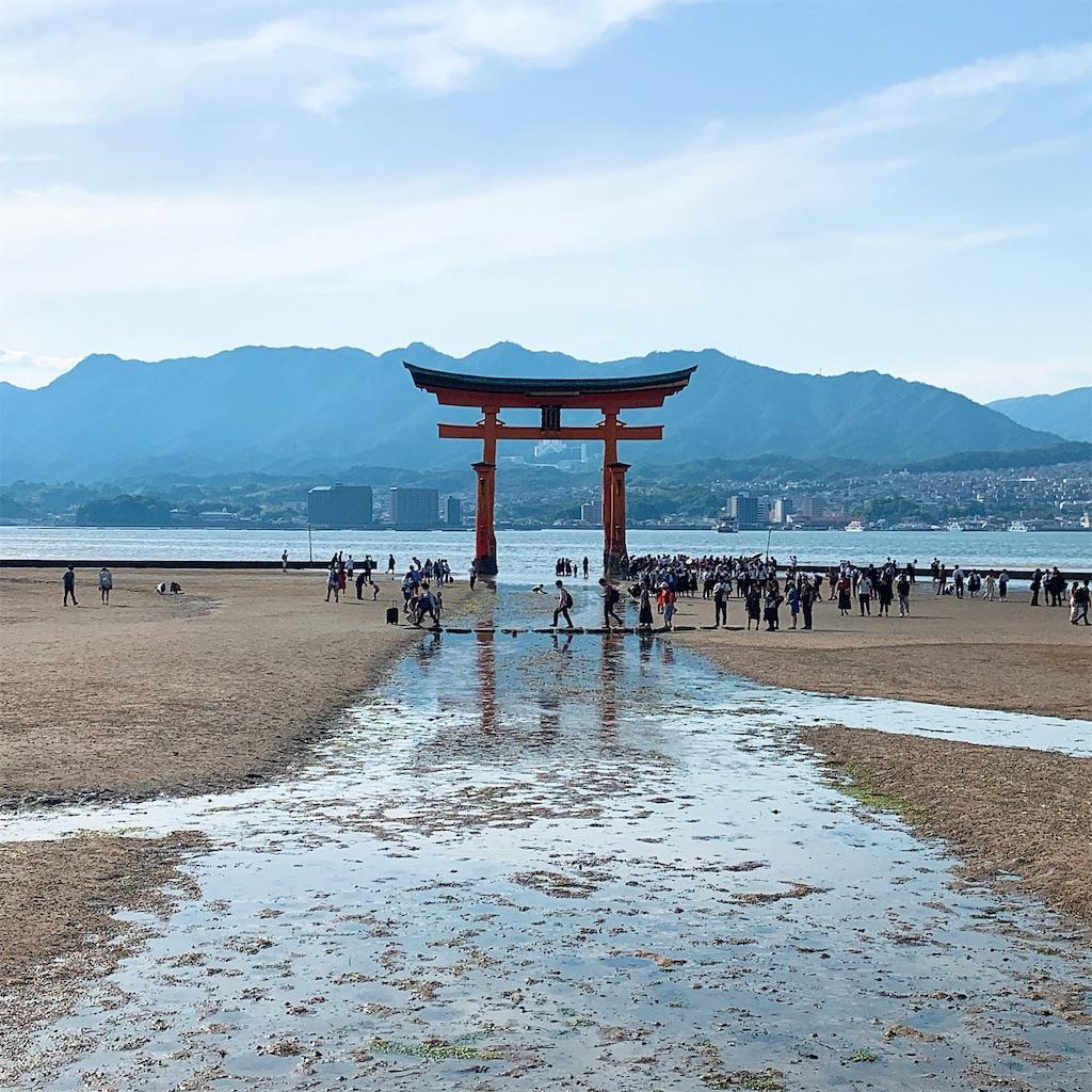 f:id:makikosuwa:20190601201823j:image