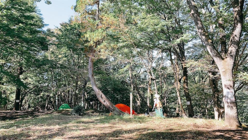 f:id:makikosuwa:20210422073650j:image