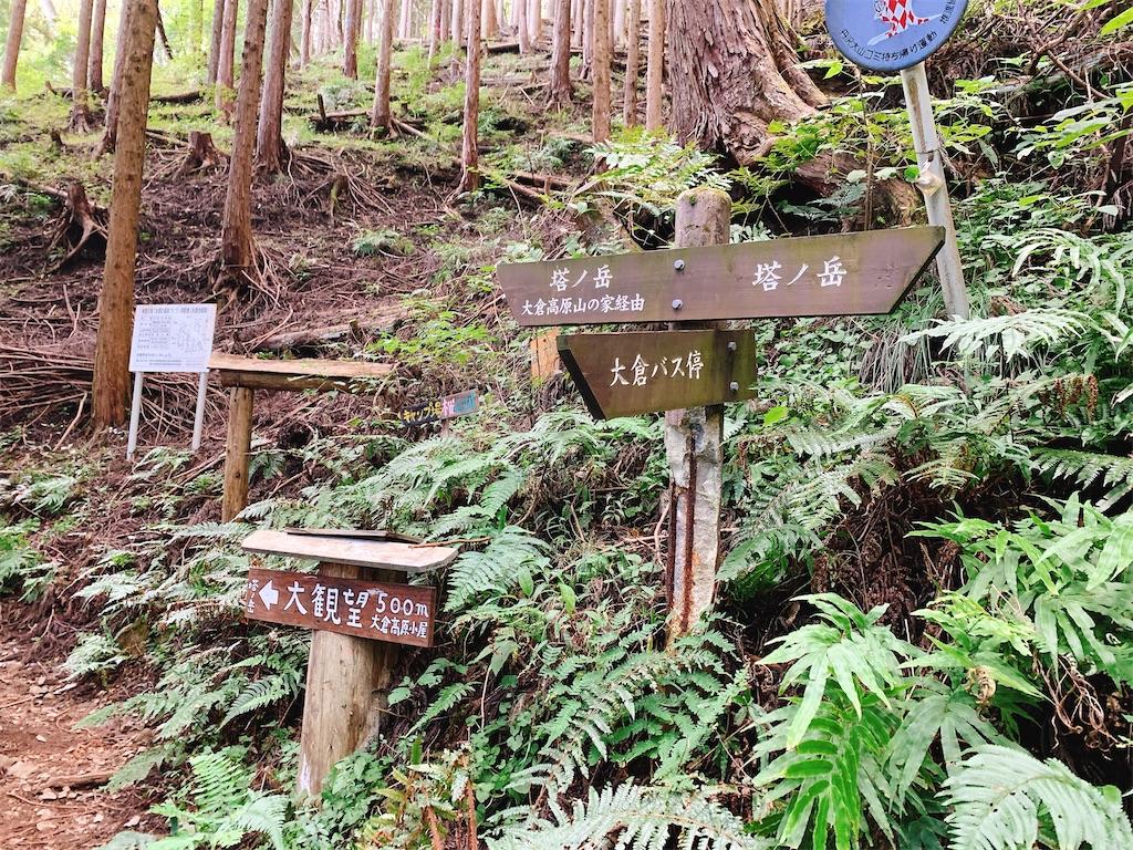 f:id:makikosuwa:20210424142042j:image