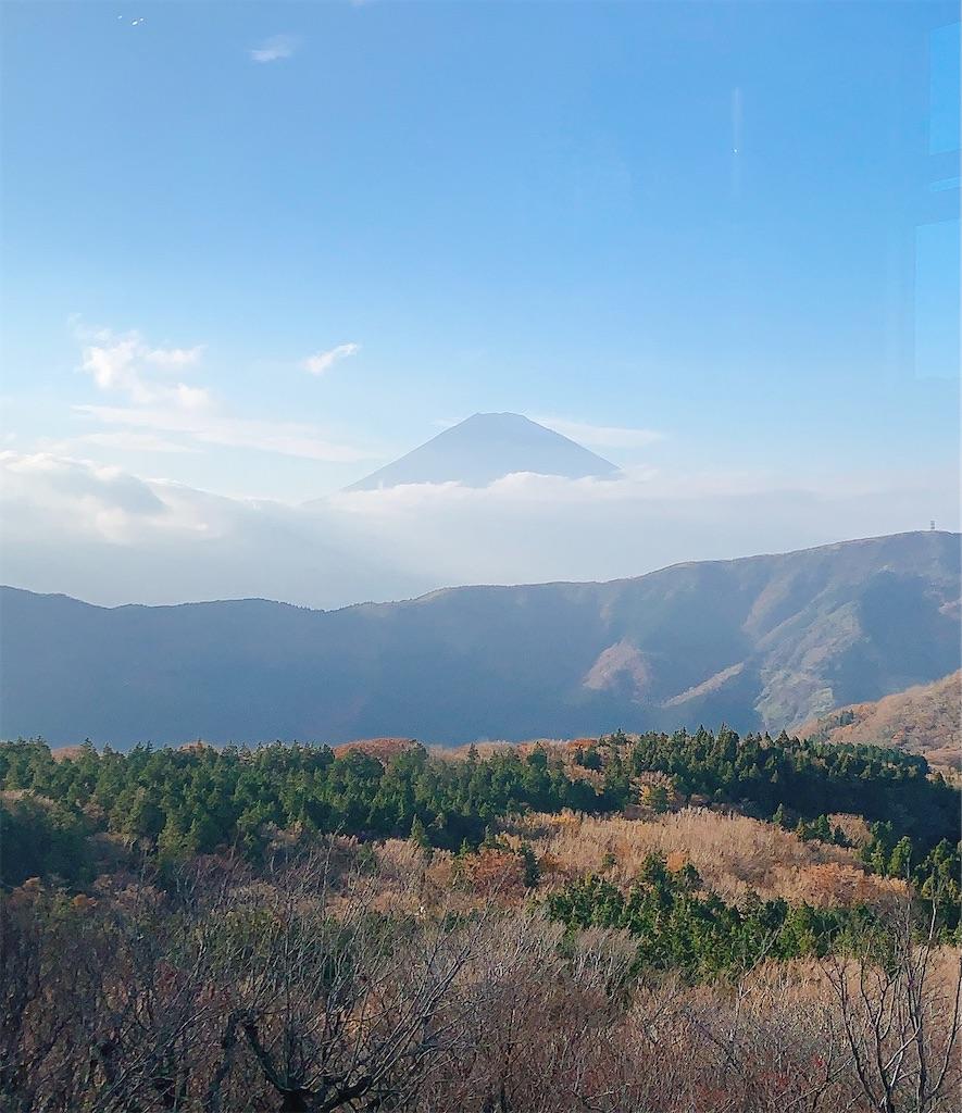 f:id:makikosuwa:20210804220033j:image