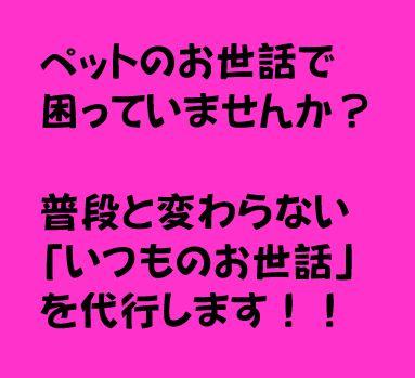 f:id:makimeda0207:20181226213440j:plain