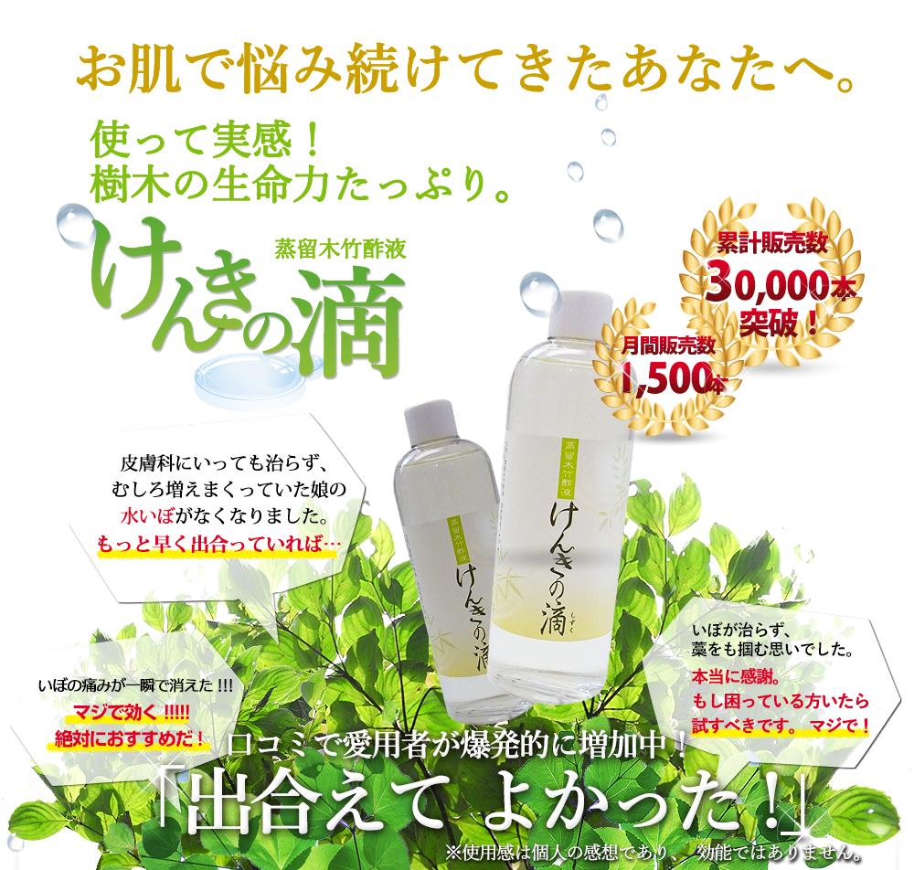 f:id:makisakouonuma:20160613130017p:plain
