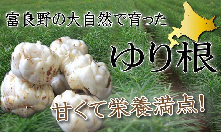 f:id:makisakouonuma:20161018170510j:plain