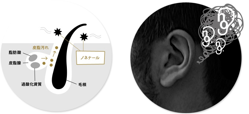 f:id:makisakouonuma:20161110112352j:plain