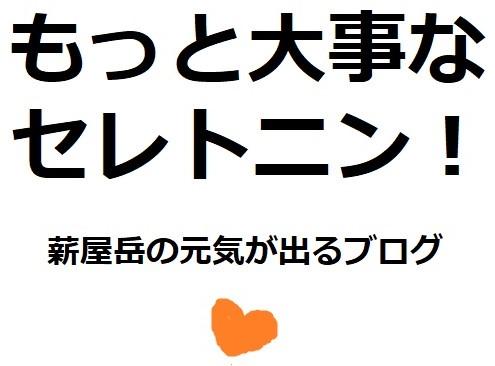 f:id:makiyagaku:20191208192108j:plain
