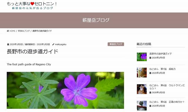 f:id:makiyagaku:20200105224916j:plain