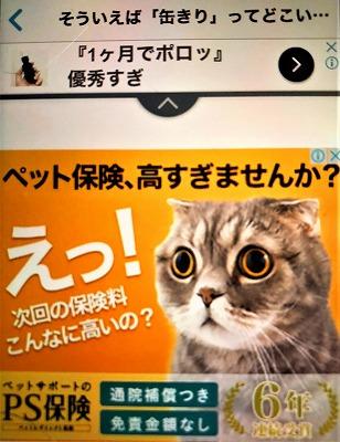 f:id:makiyagaku:20200130224522j:plain