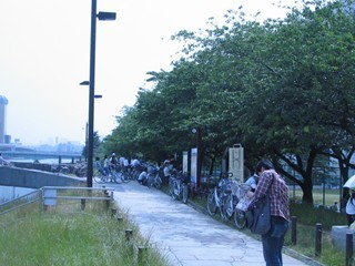 隅田川 桜橋付近2