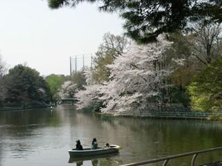 武蔵関公園3