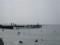 3:00くらいで映っている荒井浜海岸の飛び込み台付近