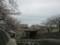 夙川公園のサクラと207系