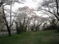狭山公園脇 自転車道路付近