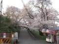 武蔵大和駅入口