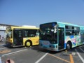立川バスH963/江ノ電バス並び