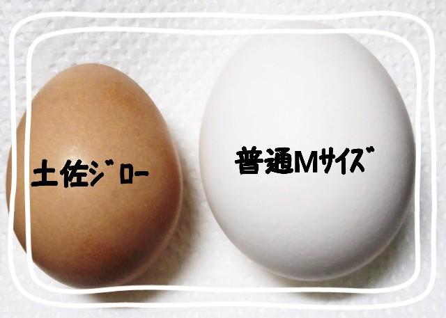 f:id:mako-s-kurowassan0411:20181209175117j:plain