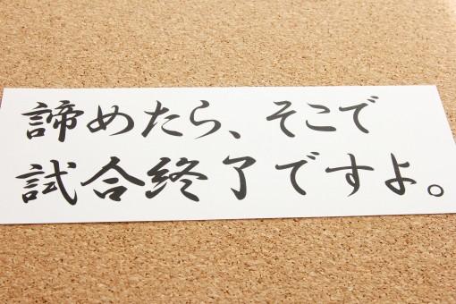 f:id:mako-s-kurowassan0411:20181211183547j:plain