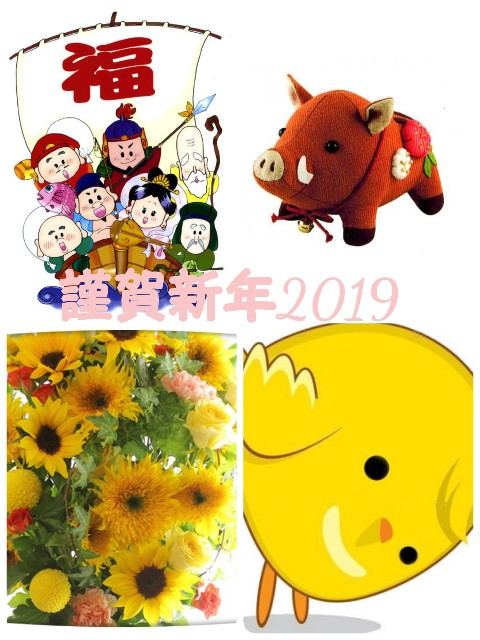 f:id:mako-s-kurowassan0411:20190101150824j:plain